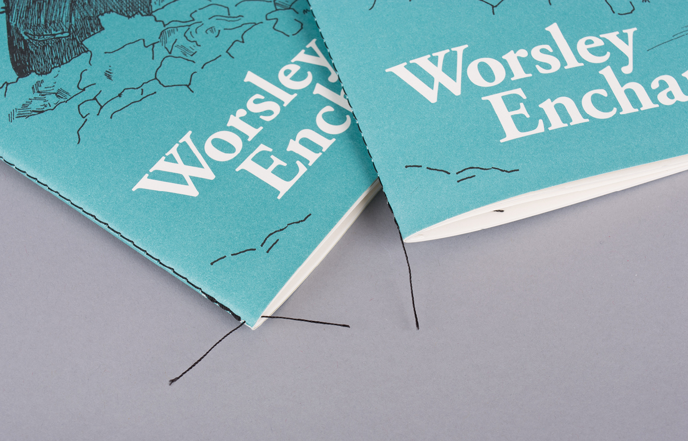 Worsley Enchanted poetry book